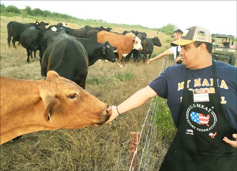 Chef Gerald Cardenas of Madero Grill and BLT Steak at the Ritz-Carlton in Aruba, feeds cattle at the Boots Ranch in Alice, Texas