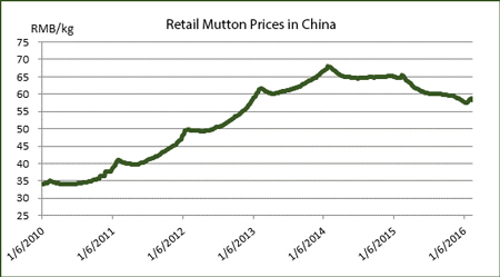 Retail-Mutton-Prices-in-China