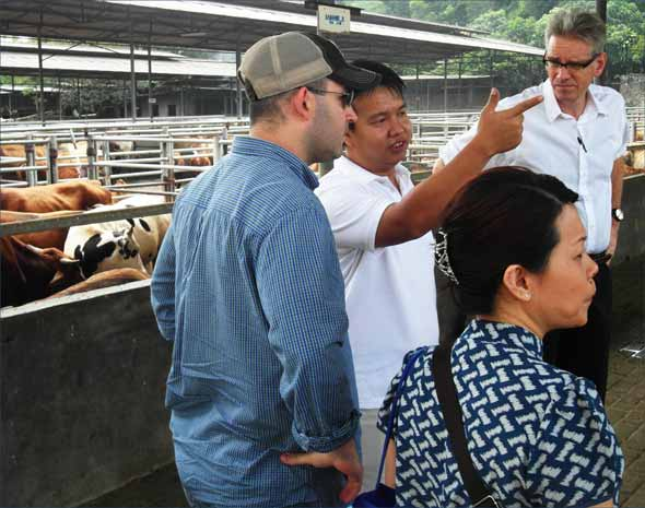 (From left) USMEF's Kevin Smith, Sabrina Yin and Joel Haggard tour a modern feedlot in Indonesia