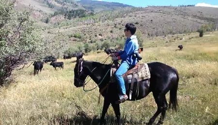 Visiting Korean blogger gets up close view of cattle grazing in Colorado